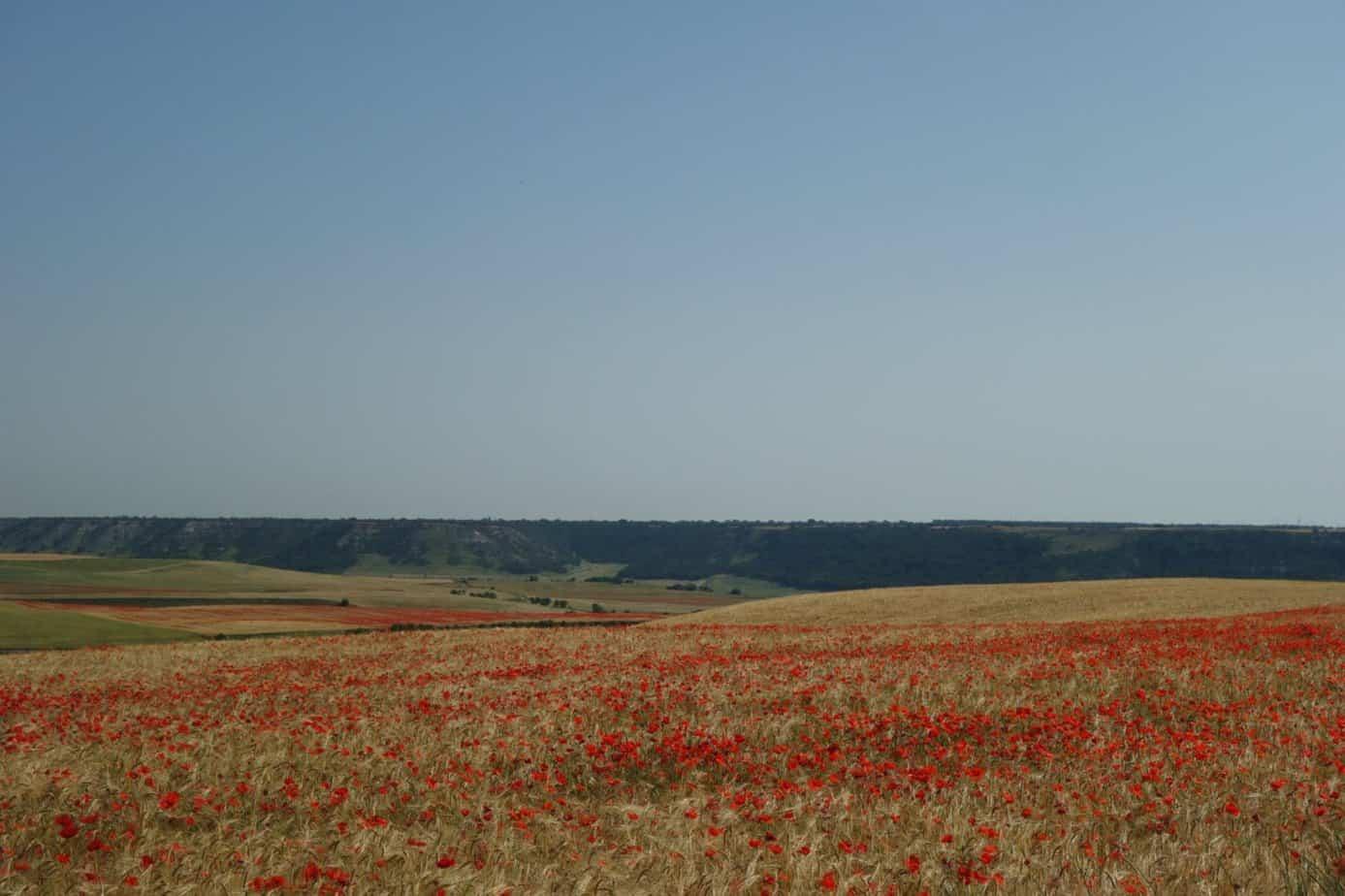 Castilla